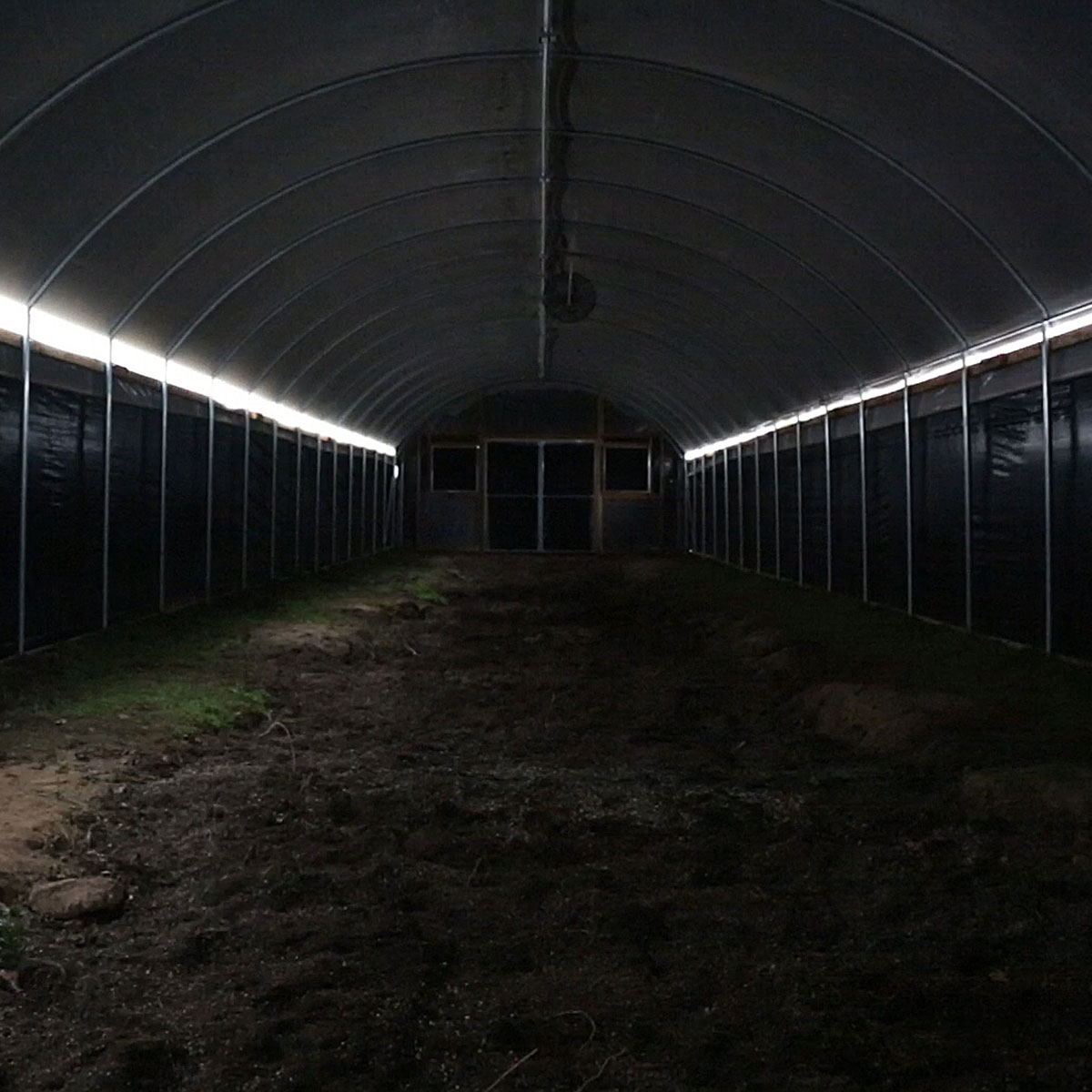 20 Wide Hoop House Greenhouse Auto Light Dep By