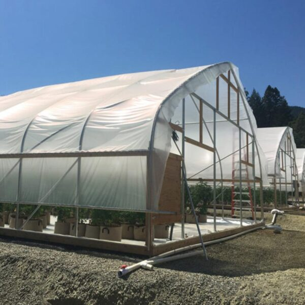 30ft 650 series standard greenhouse