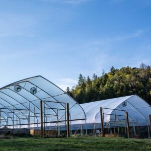Rain Cover 20' Wide Greenhouse