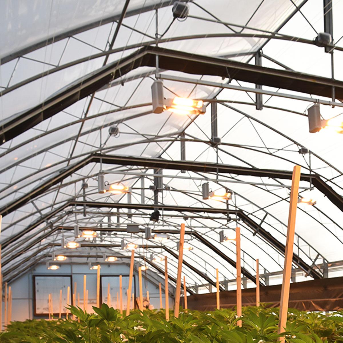 Engineered Blackout Greenhouse - Guardian Series | fullbloomlightdep.com