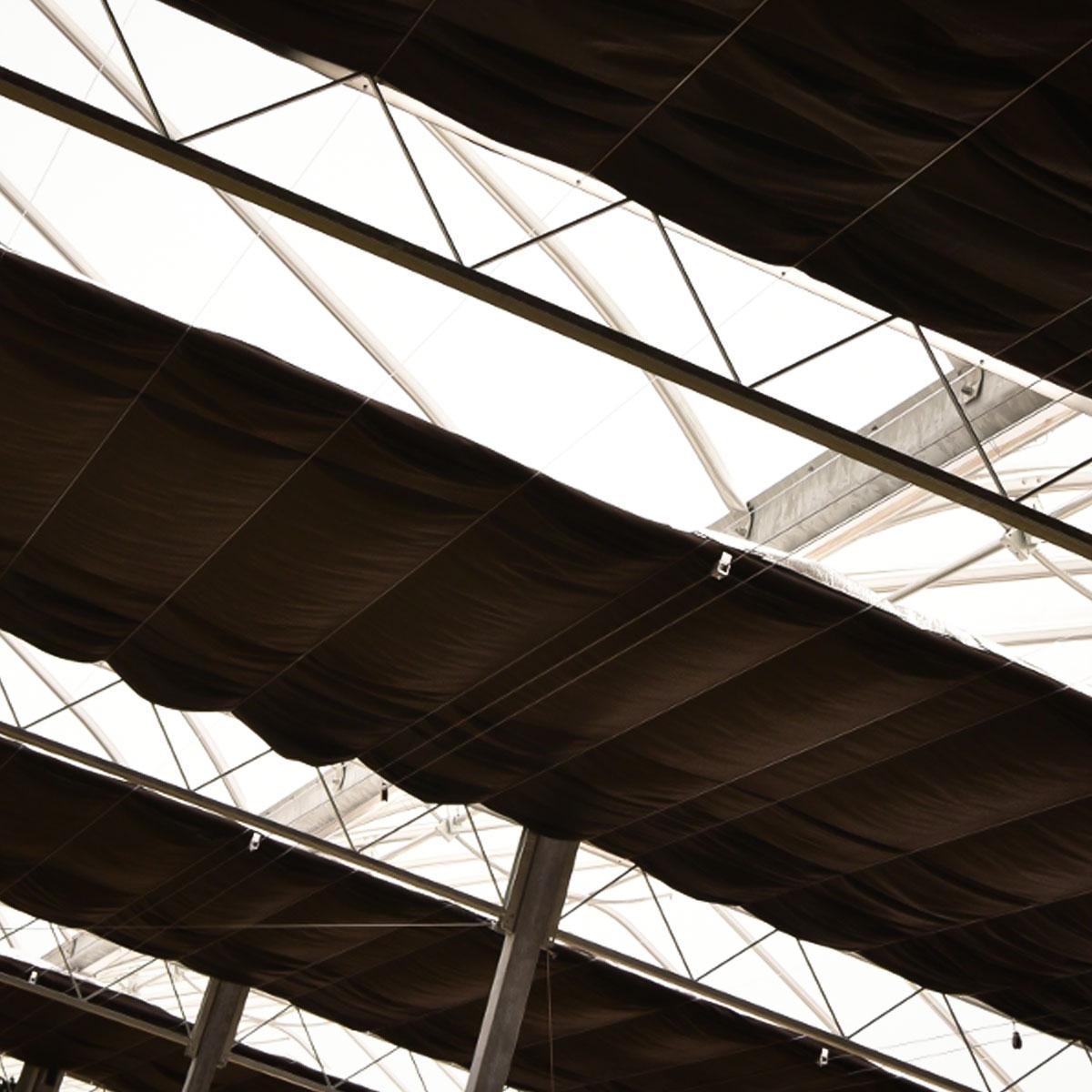 Engineered blackout greenhouse - Interior