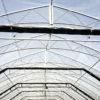 engineered blackout greenhouse - open interior