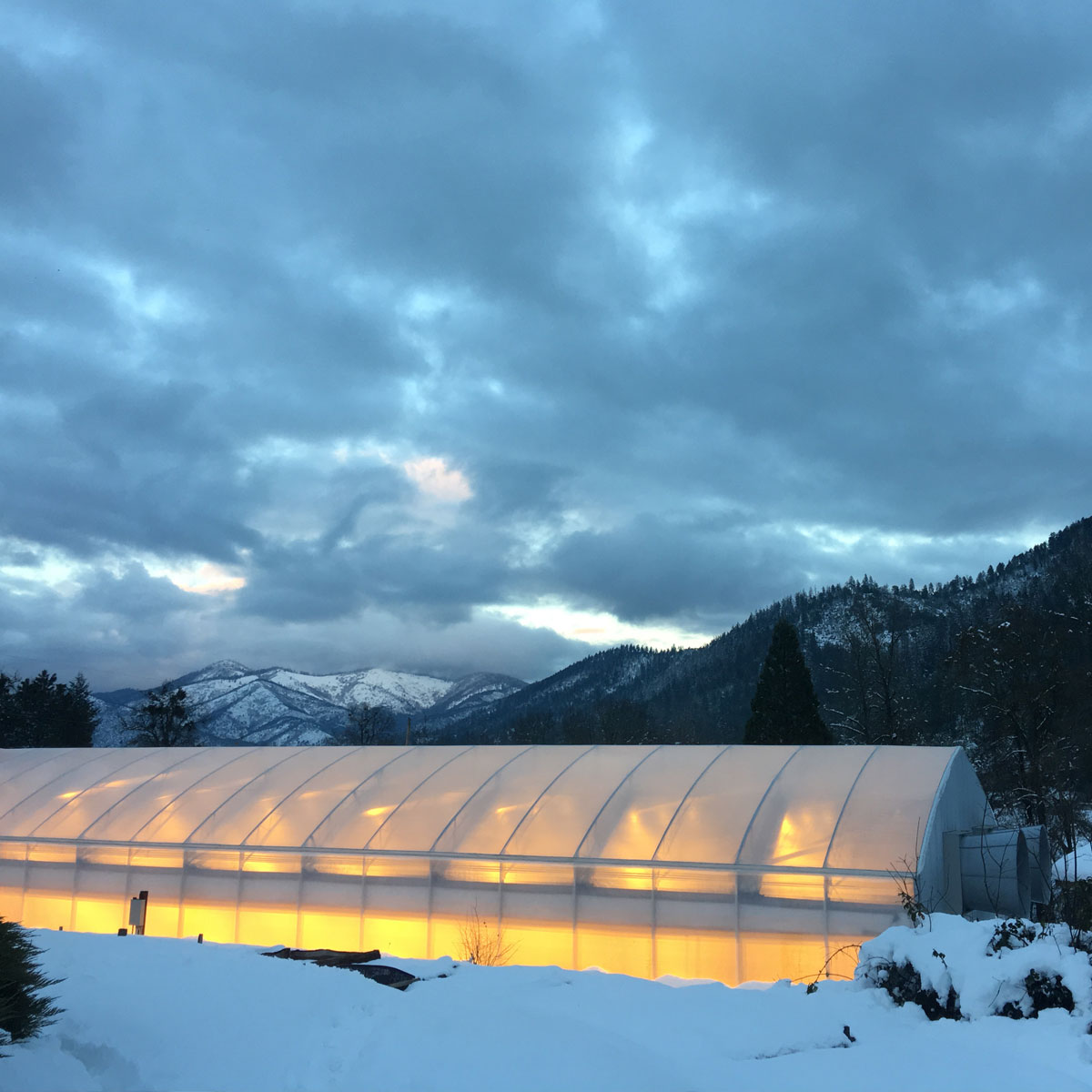 Titan Cathedral Greenhouse in the Snowy mountains