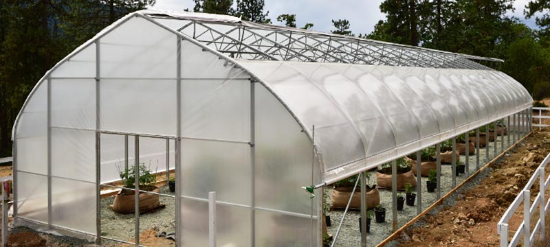 Greenhouses for Hemp and CBD