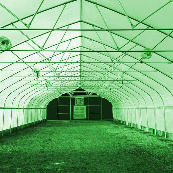 Convert your greenhouse to light dep